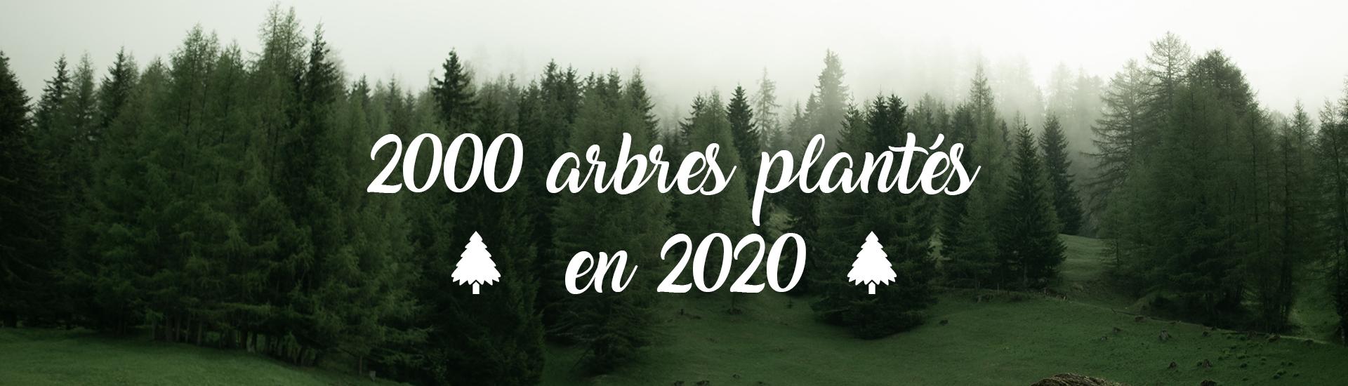 2000 arbres plantés par Denantes en 2020